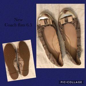 New Coach snake flats 6.5